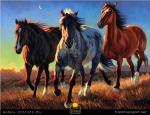 Tam Ngựa